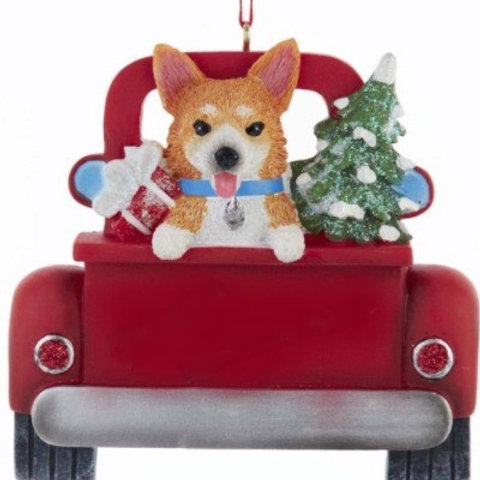 dog in red truck corgi