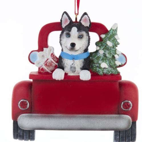 dog in red truck husky