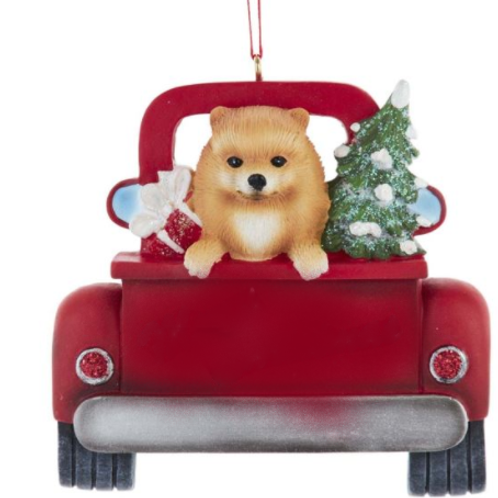dog in red truck pomeranian