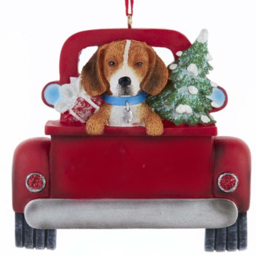dog in red truck beagle