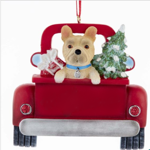 dog in red truck french bulldog