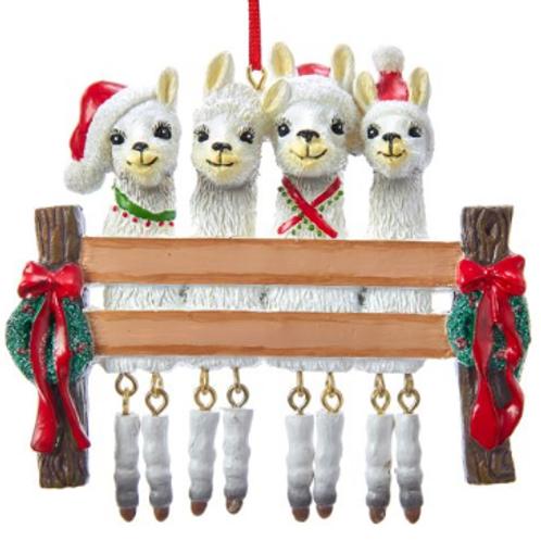 llama family 4