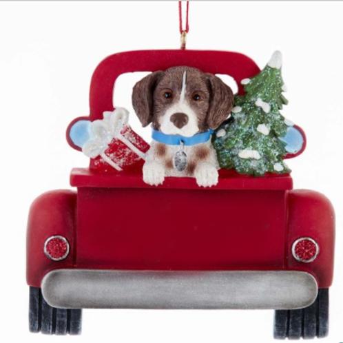 dog in red truck german shorthair pointer
