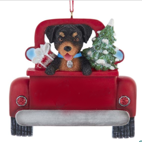 dog in red truck rottweiler