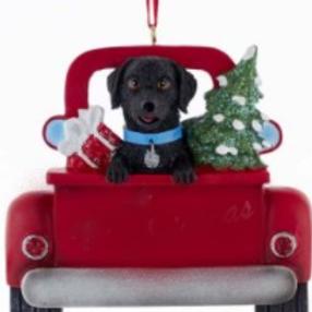 dog in red truck black lab