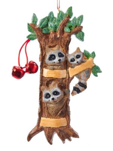 raccoon family 3