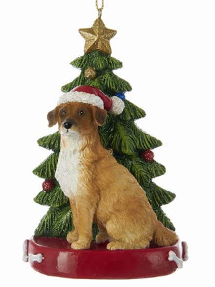 mixed breed with christmas tree