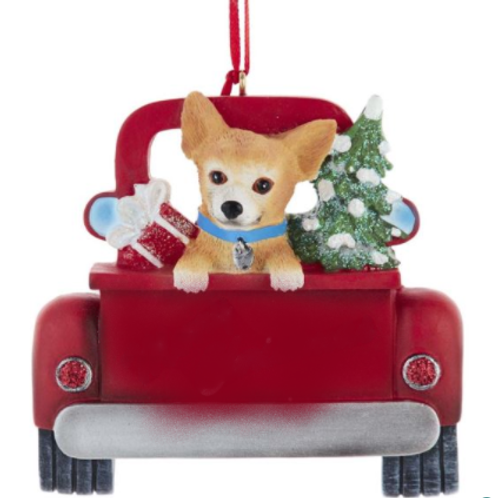 dog in red truck chihuahua
