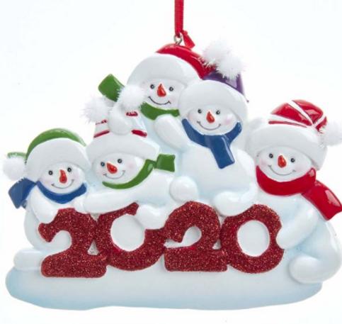 a1969 2020 snowfamily 5.png