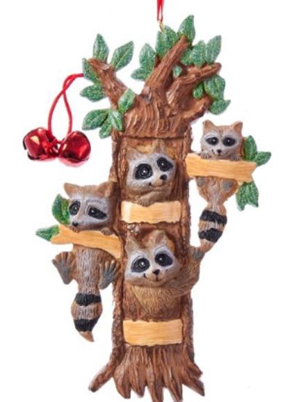 raccoon family 4