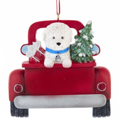 dog in red truck bichon frise
