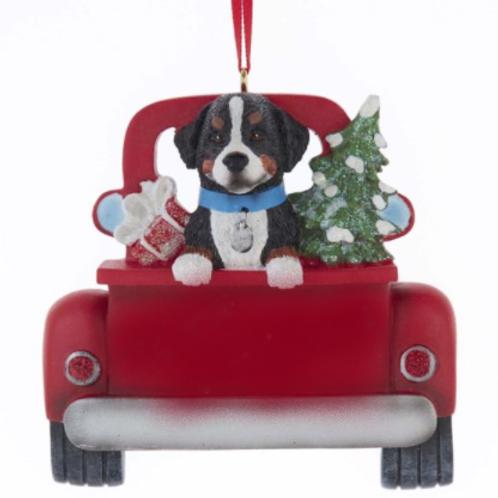 dog in red truck bernese