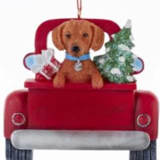 dog in red truck red dachshund