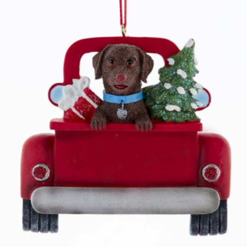 dog in red truck brown lab