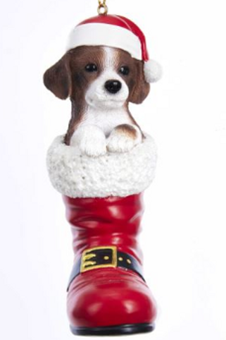 dog in boot mixed breed