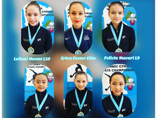 NWR Wins Six All-Around MN State Titles