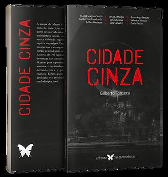 cidade cinza-book.png