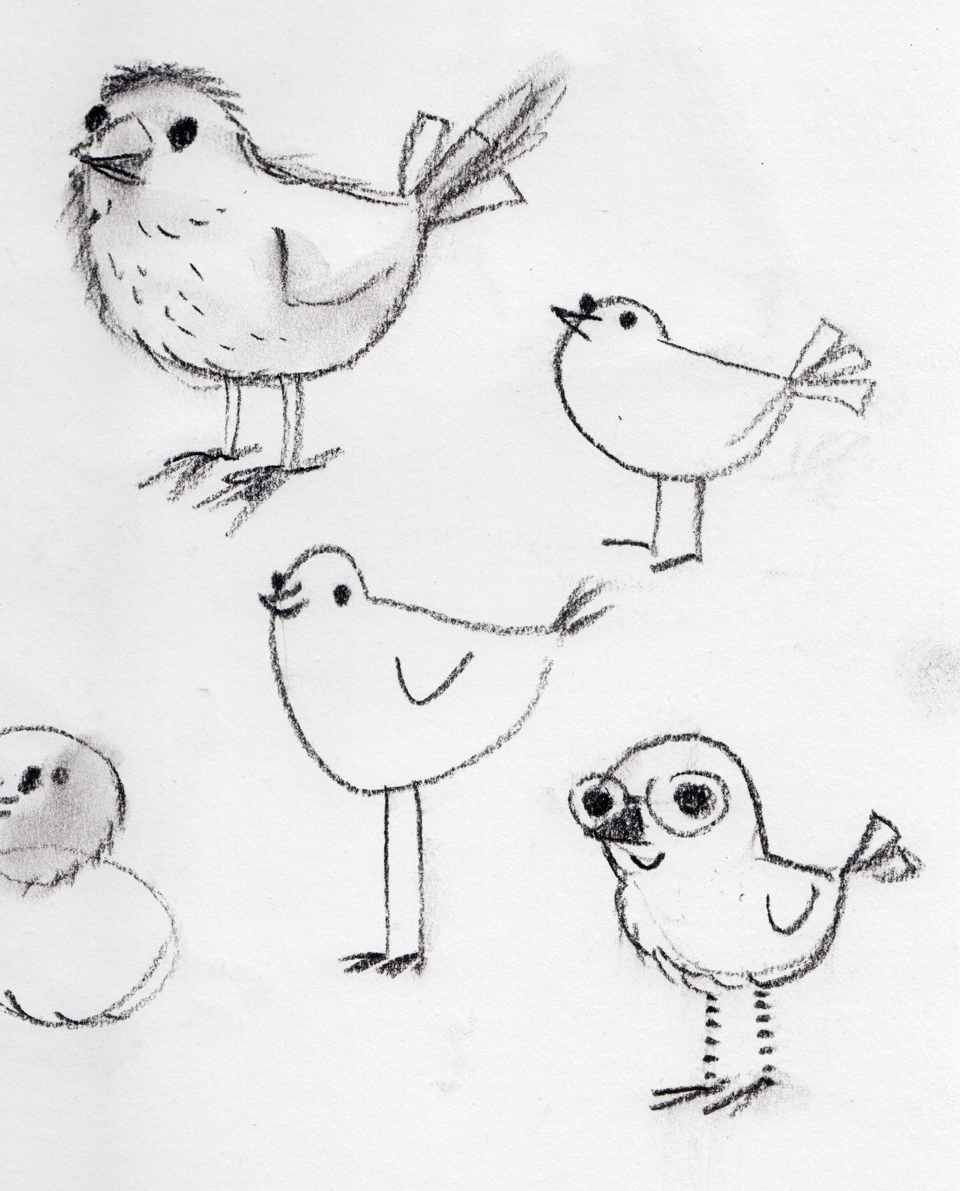 birds 01 copy
