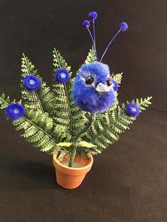 Birdplant - Tumbleleaf