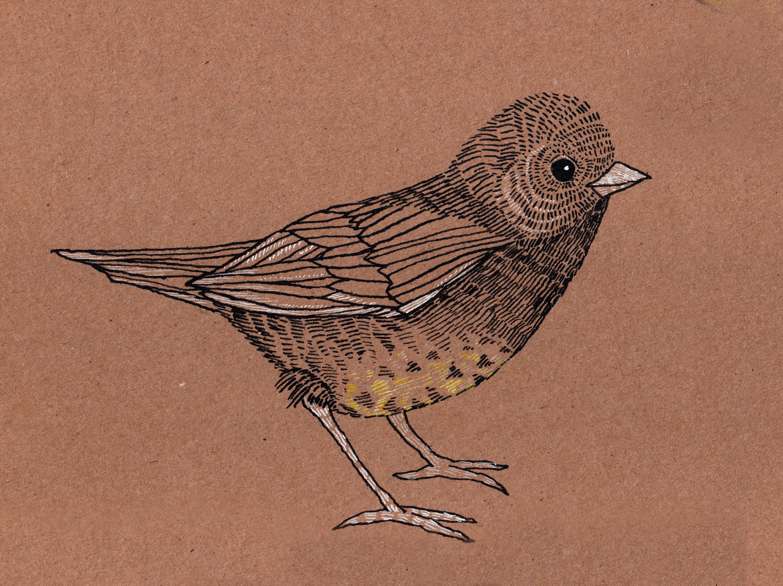 bird_ink_1