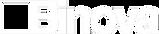Logo Binova.png