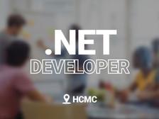 02 Senior .Net Developers