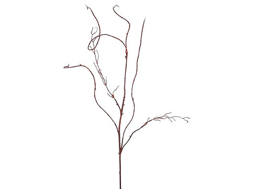 Curly Willow Vine 48""