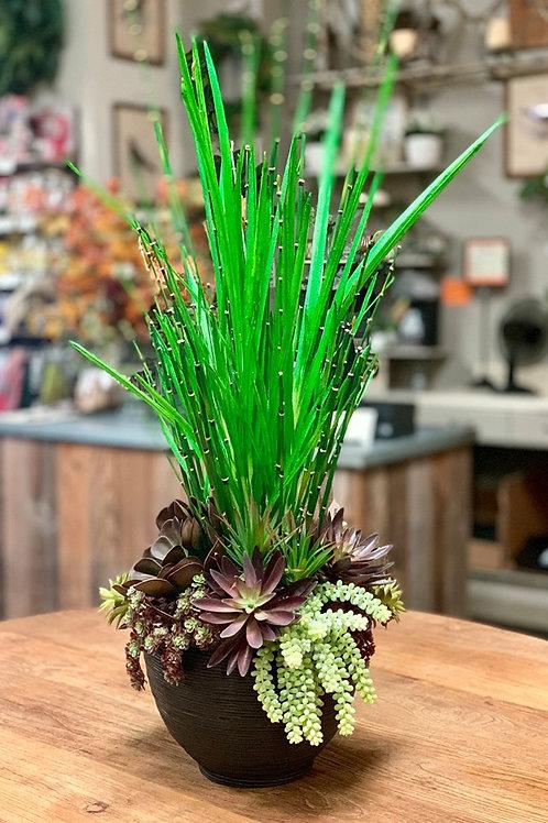 """Echeveria/Succulent/Yucca in Bamboo Bowl 41""""H"""