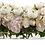 "Thumbnail: Peony/Ranunculus/Rose in Glass Vase 10"""