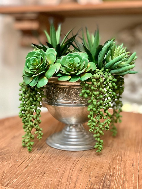 "Echeveria/Agave/Pearl in Tin Urn 12""H"