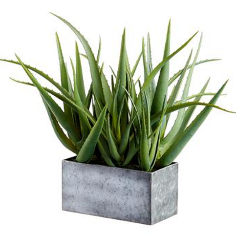 """Agave in Metal Pot Green 16"""""""
