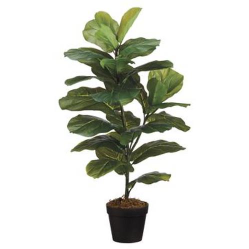 "Fiddle Leaf Plant in Pot 31.5"""