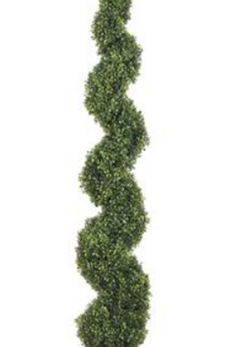 Spiral Boxwood Topiary 5' Green