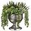 """Thumbnail: Echeveria/Agave/Pearl in Tin Urn 12""""H"""