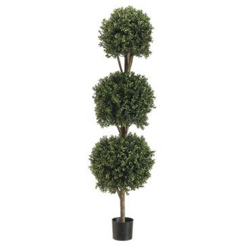 Tri Ball Boxwood Top 5'