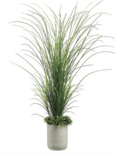 Tall Grass with Rye Grass in Fiber Cement Planter 70""