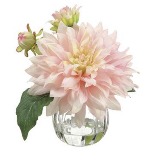 Dahlia in Glass Vase  Pink Cerise 8""