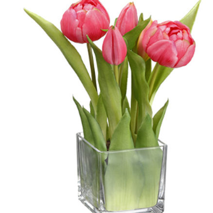"""Tulip in Glass Vase Teaberry 9"""""""