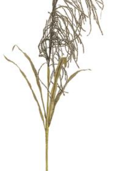 REED GRASS BLOOM SPRAY BROWN 3 $9.90