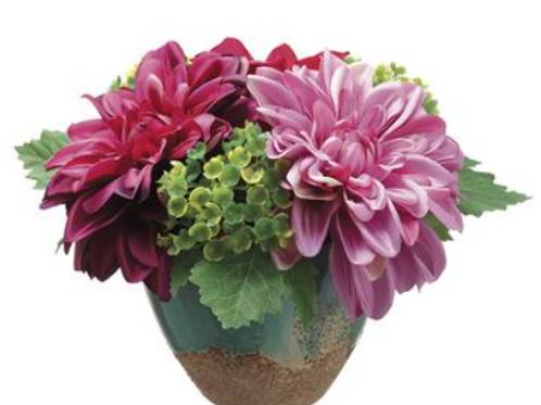 """Dahlia in Ceramic Vase 6.5"""""""