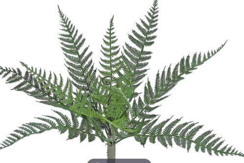 "Forest Fern Bush12.5"" UV/FR LT GR"