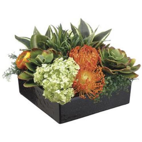 """Bromelia/Protea Snowball in Square Dish Green 9""""H"""