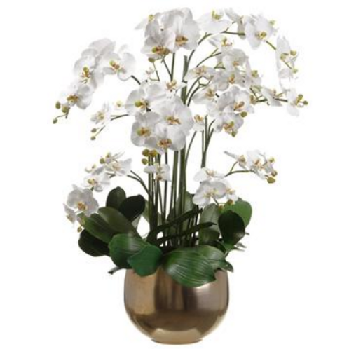 """Orchids in Planter 39"""""""