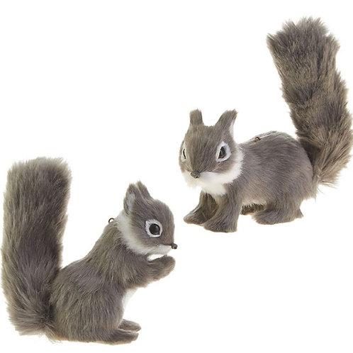 "Squirrel Ornament 6"""
