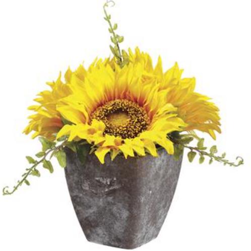 """Sunflower in Pot 6.5"""""""
