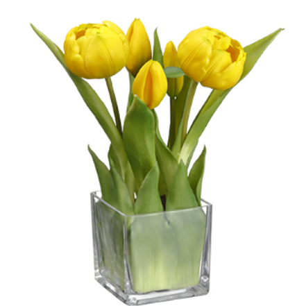 Tulip in Glass Vase Yellow 9""