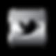 twitter-chrome-logo.png