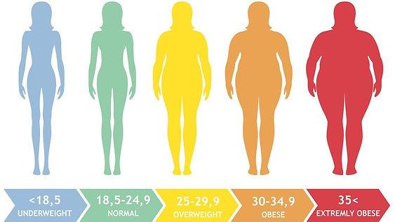 BMI Guide 1.jpeg