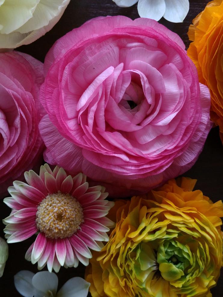 Teestunde mit Blüten-Spielereien