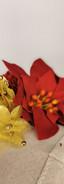 Red velvet ponsiettas with matching